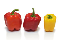 Peppers on a white background Royalty Free Stock Image