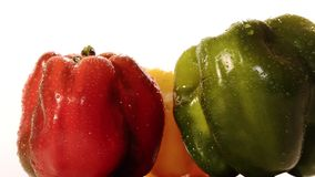 Peppers stock video footage