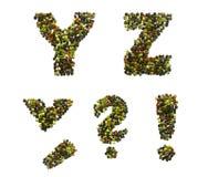 Peppra alfabetet och numrerar Royaltyfri Bild