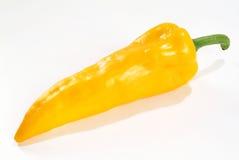 peppra yellow Arkivfoto