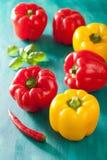 Pepprar röd guling för den sunda grönsaken på turkosbakgrund Fotografering för Bildbyråer