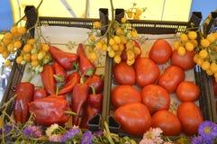 pepprar tomater Arkivfoto