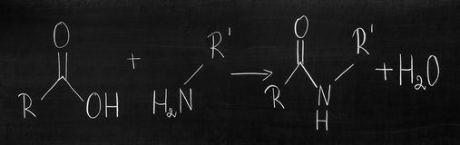 Peptide bonds. Dehydration synthesis (condensation) reaction forming an amide Stock Images