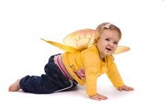 Pequeña abeja Foto de archivo libre de regalías