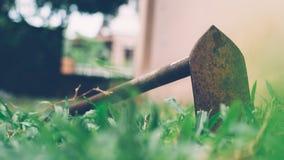 Pequeña azada del primer en la hierba verde Fotografía de archivo libre de regalías
