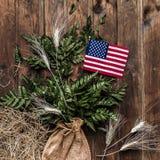 Pequeña bandera americana con el helecho en fondo de madera rústico envejecido, resistido foto de archivo