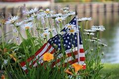Pequeña bandera americana en el jardín de margaritas Fotos de archivo