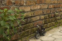 Pequeña bicicleta por la pared de ladrillo Imagen de archivo libre de regalías