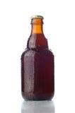 Pequeña botella de cerveza Fotografía de archivo
