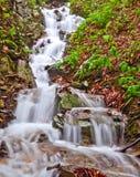 Pequeña caída del agua Imagen de archivo