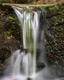 Pequeña caída del agua encendido en Laurel Ridge Trail Fotos de archivo libres de regalías