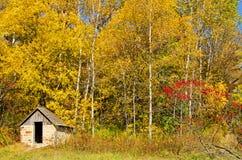 Pequeña cabina en el parque de estado natural del puente, Wiconsin Imagen de archivo