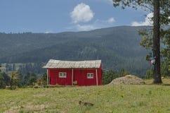 Pequeña cabina roja en el bosque imagenes de archivo