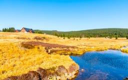 Pequeña cala de la montaña que serpentea en el medio de prados y de día soleado del bosque con el cielo azul y las nubes blancas  fotos de archivo
