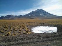 Pequeña cantidad de hielo con la hierba alrededor, algunas vicuñas y un volcán Fotos de archivo libres de regalías