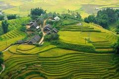 Pequeña casa con las terrazas del arroz Imagenes de archivo