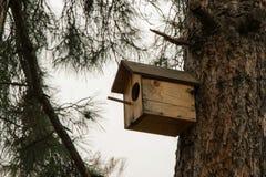 Pequeña casa de madera para los pájaros en el árbol de pino, concepto - cuide para los pájaros salvajes Imagenes de archivo