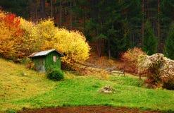 Pequeña casa en el bosque Imagen de archivo libre de regalías