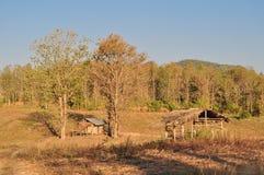 Pequeña casa en el país Foto de archivo libre de regalías