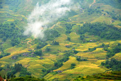 Pequeña casa en terrazas del arroz, Sapa, Vietnam Imagenes de archivo