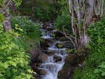 Pequeña cascada Foto de archivo libre de regalías