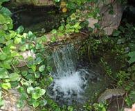 Pequeña cascada Foto de archivo