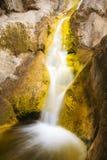 Pequeña cascada con el liquen de oro en rocas Imagen de archivo libre de regalías