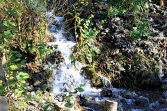Pequeña cascada corriente Imagenes de archivo