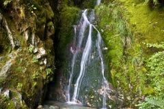 Pequeña cascada cubierta de musgo 2 Fotos de archivo libres de regalías
