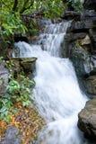 Pequeña cascada de la montaña Fotos de archivo libres de regalías