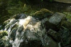 Pequeña cascada del jardín Fotografía de archivo libre de regalías