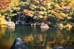 Pequeña cascada detrás de los árboles coloridos brillantes en otoño en el jardín Koko-en Japón fotos de archivo