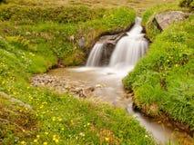 Pequeña cascada en corriente de la montaña en el prado del verano de las montañas Tiempo frío y lluvioso Fotografía de archivo libre de regalías