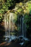 Pequeña cascada en el bosque foto de archivo
