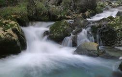 Pequeña cascada en el bosque Fotos de archivo libres de regalías
