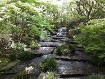 Pequeña cascada en el jardín Fotografía de archivo libre de regalías