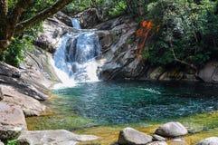 Pequeña cascada en las altiplanicies de Atherton, Australia Fotografía de archivo