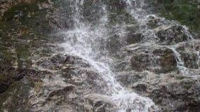 Pequeña cascada en las maderas metrajes