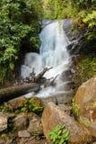 Pequeña cascada en selva tropical Imagen de archivo libre de regalías