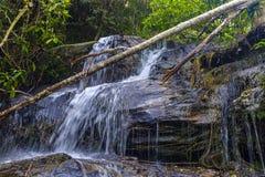 Pequeña cascada en un bosque Imágenes de archivo libres de regalías