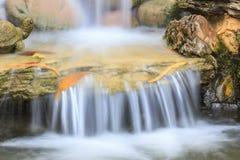 Pequeña cascada en un jardín Imagen de archivo