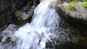 Pequeña cascada en una reserva de naturaleza almacen de metraje de vídeo