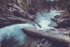 Pequeña cascada que fluye abajo al bosque, Tatras Fotografía de archivo libre de regalías