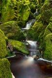 Pequeña cascada rodeada por las rocas cubiertas de musgo verdes Imagenes de archivo