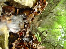 Pequeña cascada a través de las hojas Foto de archivo libre de regalías