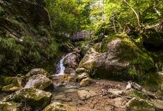 Pequeña cascada y el puente en el bosque de la montaña Fotos de archivo libres de regalías