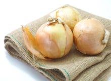 Pequeña cebolla fresca del oro Imagen de archivo