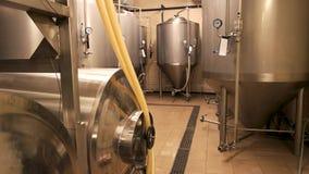 Pequeña cervecería, producción de la cerveza del arte almacen de metraje de vídeo