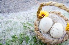 Pequeña cesta con dos huevos de Pascua en el mar doc. en hora de oro fotos de archivo libres de regalías