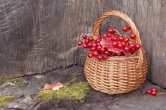 Pequeña cesta con las bayas del rojo del otoño Imagenes de archivo
